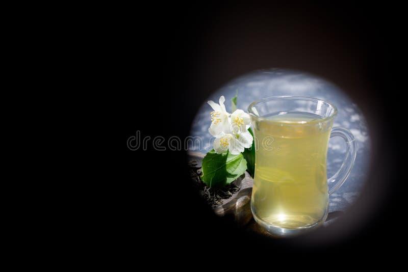 Ressemblez à des jumelles sur le thé vert avec des fleurs de jasmin dans une tasse en verre Endroit sous votre texte photographie stock libre de droits