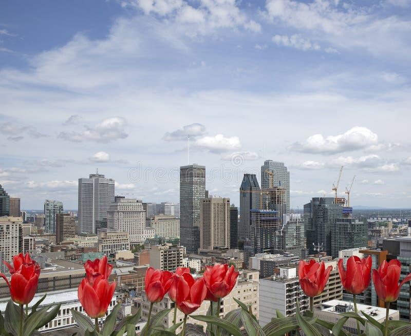 Ressort à Montréal images libres de droits