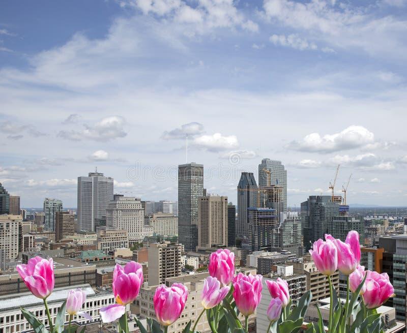 Ressort à Montréal images stock