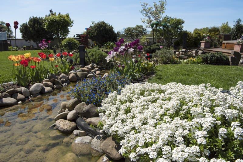 Ressort dans le beau jardin image libre de droits