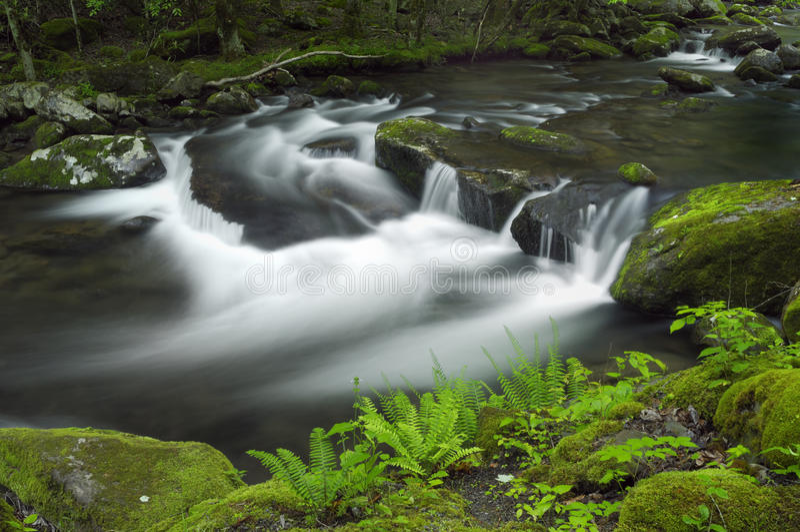 Ressort dans Tremont au parc national de Great Smoky Mountains, TN Etats-Unis image stock