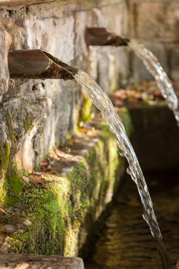 Ressort de source d'eau de fontaine dans la forêt photo libre de droits