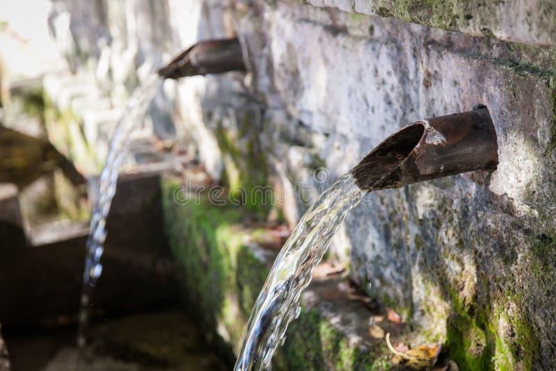 Ressort de source d'eau de fontaine dans la forêt photographie stock libre de droits