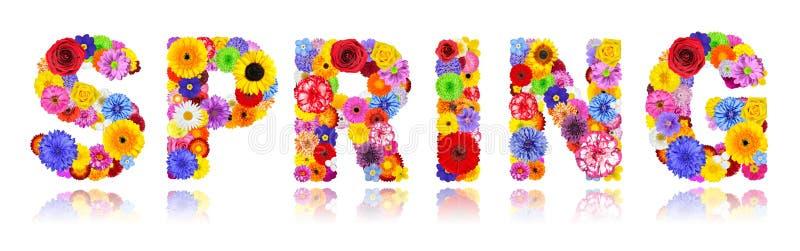 Ressort de Word fait de fleurs colorées d'isolement sur le blanc photos stock