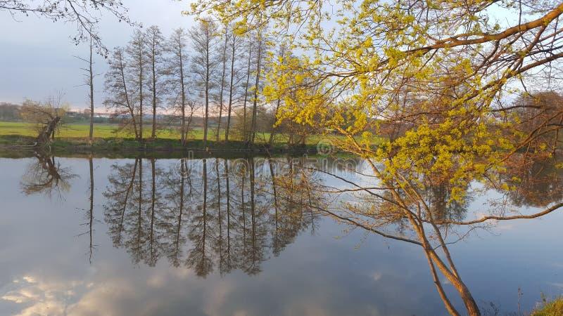 Ressort et rivière images libres de droits