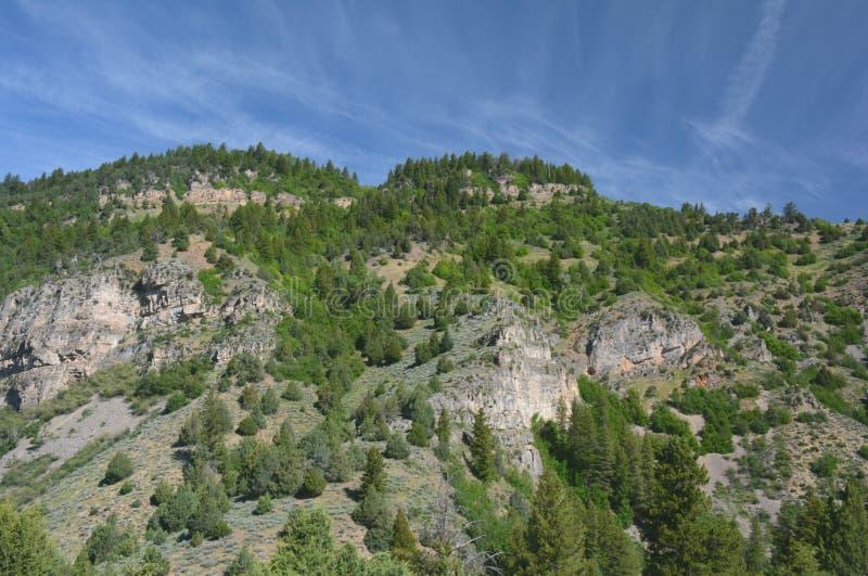 Ressortissant Forest Escarpment And Blue Sky de cachette photographie stock