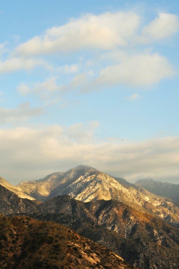Ressortissant Forest Golden Hour d'Angeles photos stock