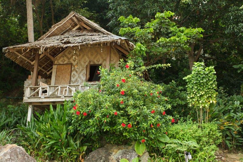 Ressource en bois en île tropicale photos libres de droits