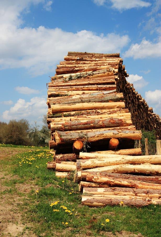 Ressources soutenables - bois de charpente photographie stock libre de droits
