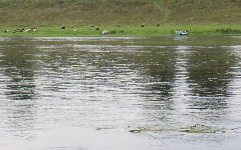 Rest auf der Flussbank stockfotografie