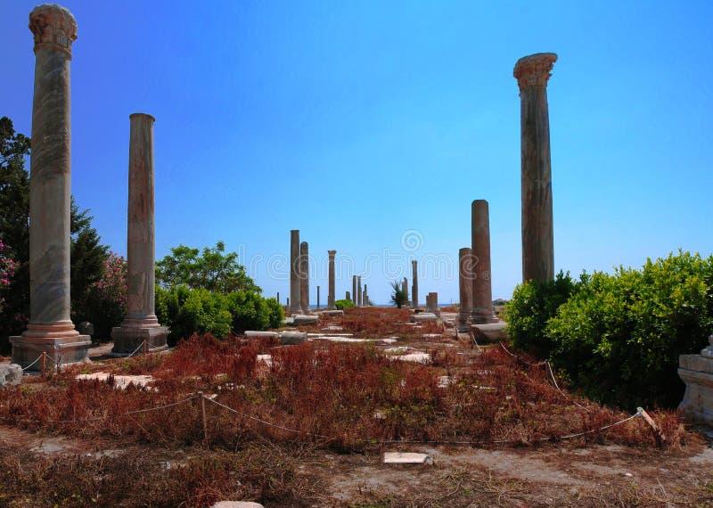Rest av forntida kolonner på den Al Mina utgrävningplatsen på däcket, Libanon royaltyfri foto