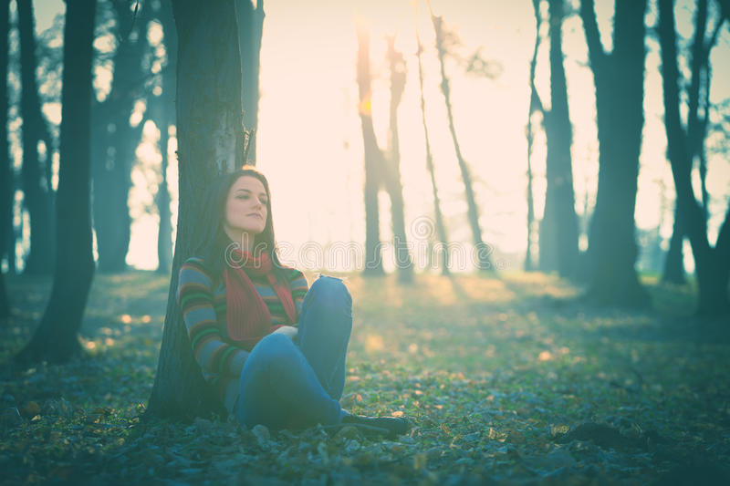 Download Rest in forest stock image. Image of retro, young, female - 36413249