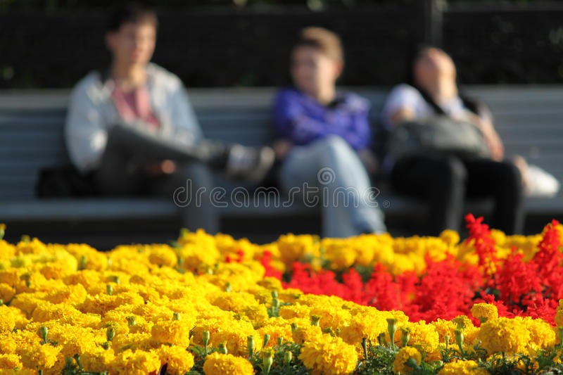 Rest in park royalty free stock images