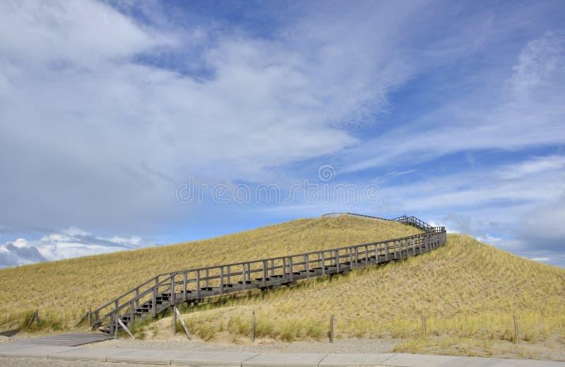 Restauração da duna imagem de stock royalty free