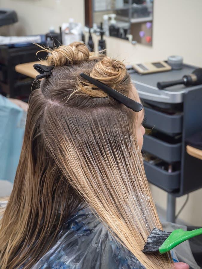 Restauração do cabelo danificado com materiais inovativos imagem de stock royalty free