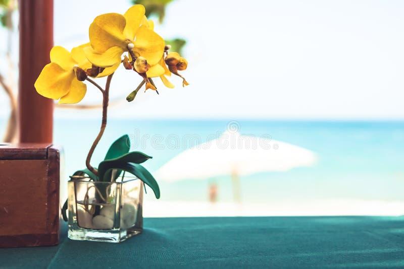 Restauracja stół z storczykowym kwiatem przy tropikalną plażową kawiarnią z zamazanym tłem podczas plażowych wakacji zdjęcie stock