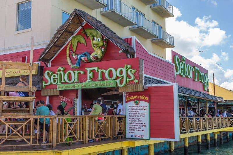 Restaurant de Senor Frog's photos libres de droits