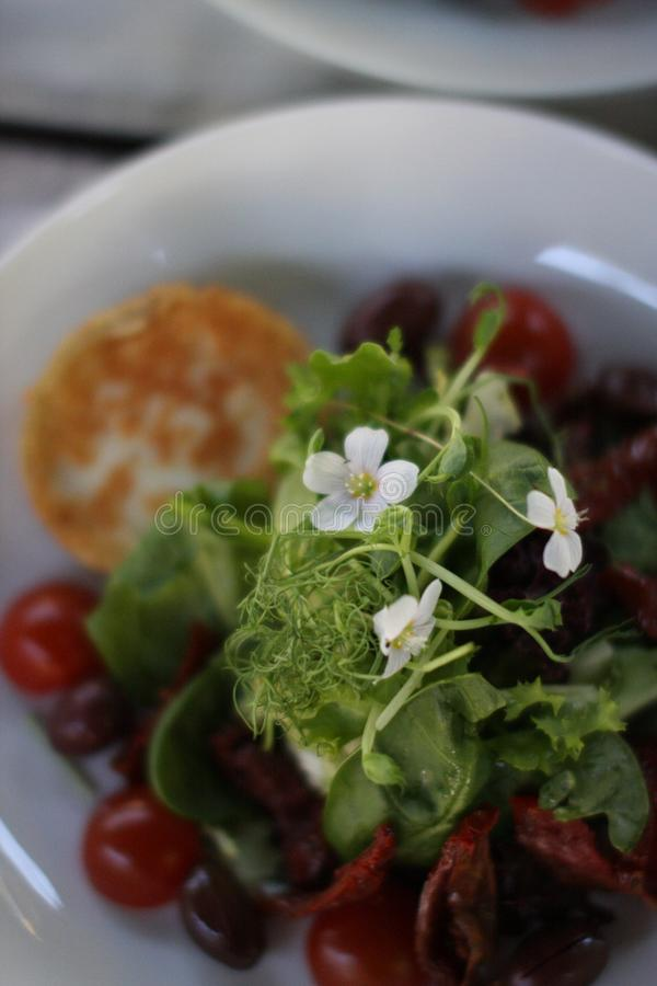 Restaurant goat cheese salat with cherry tomatoes. European cuisine restaurant goat cheese salat with cherry tomatoes garnished with common wood sorrel royalty free stock photo