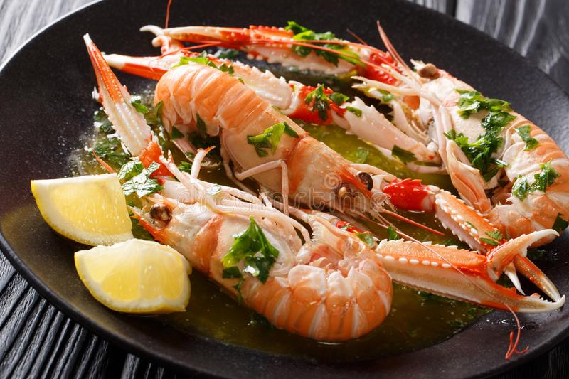 Restaurant meal. langoustine, scampi, Nephrops norvegicus with l stock photography