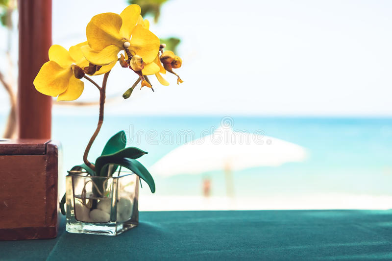 Restaurant table with orchid flower at tropical beach cafe with blurred background during beach holidays stock photo