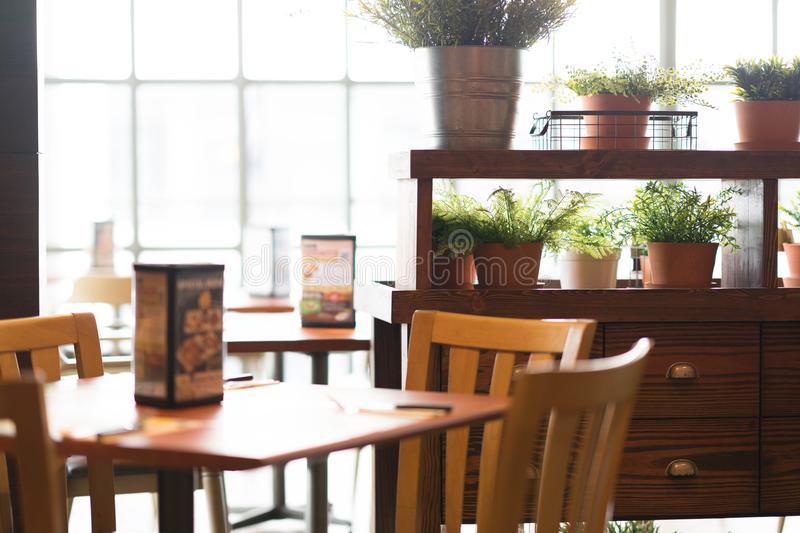 Restaurant view with sunlight and plants in pot in decoration stock image