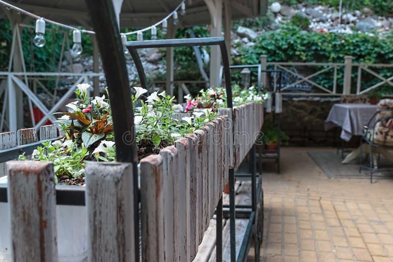 Restaurante do jardim no centro da cidade Terraço do verão do restaurante foto de stock royalty free