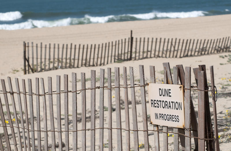 Restauration dunaire photos libres de droits