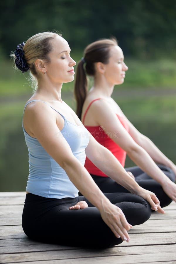 Restaurierungs- Yoga stockfotos