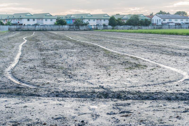 Restful взгляд рисовых полей стоковые изображения rf