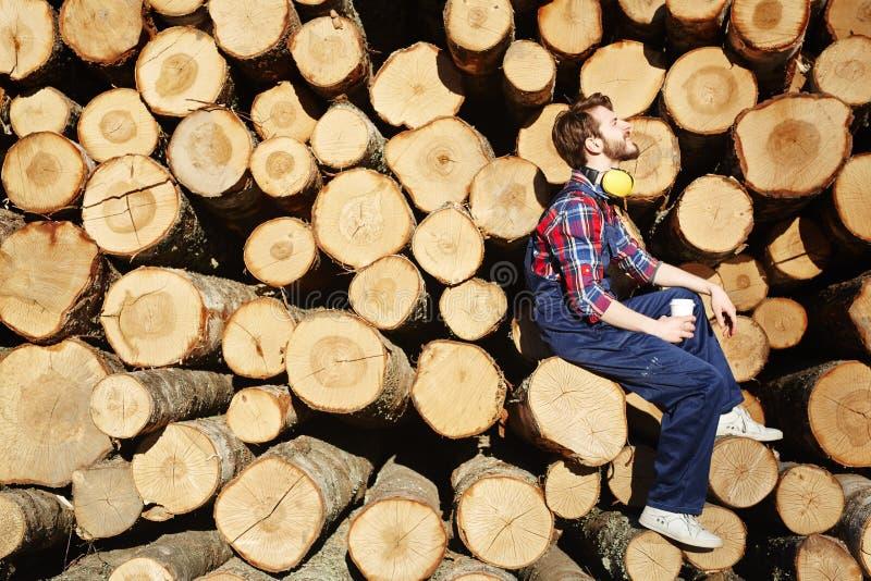 Restful дерев-работник стоковые изображения