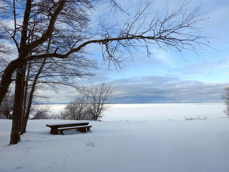 Curonian spit in winter, Lithuania. Resting bench and table, trees and beautiful cloudy sky near Curonian Spit royalty free stock images