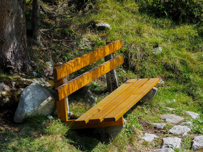 Resting place bench in meadow. On a sunny day stock images