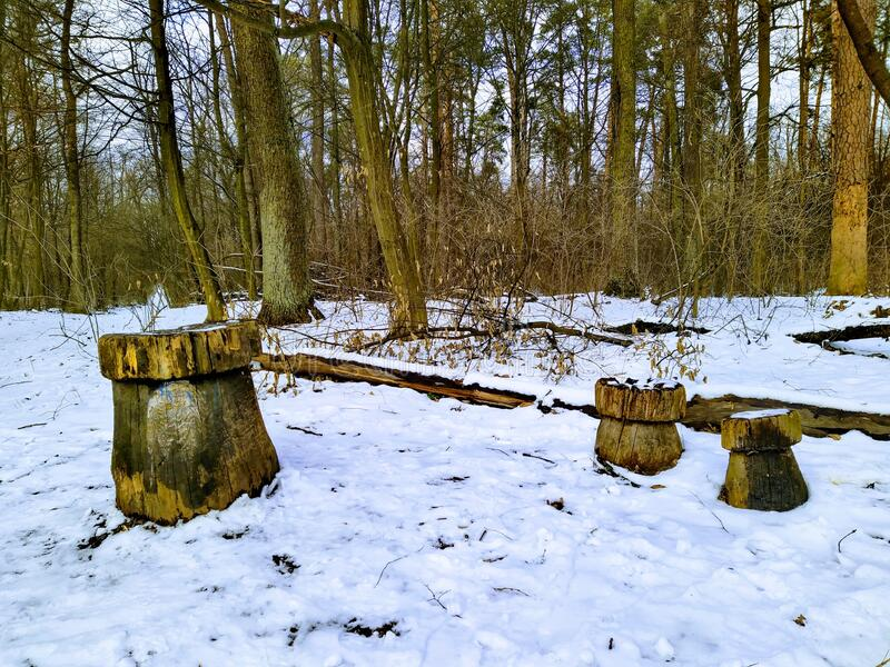 Resting place in snowy forest in cloudy day. Resting place in snowy winter forest in cloudy day stock photos