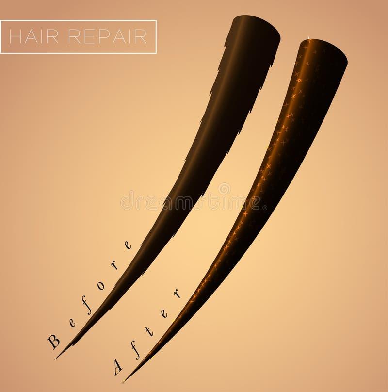 Restore split ends of hair. Result after salon cosmetic procedure. Restore split ends of hair. Result after salon spa cosmetic procedure royalty free illustration