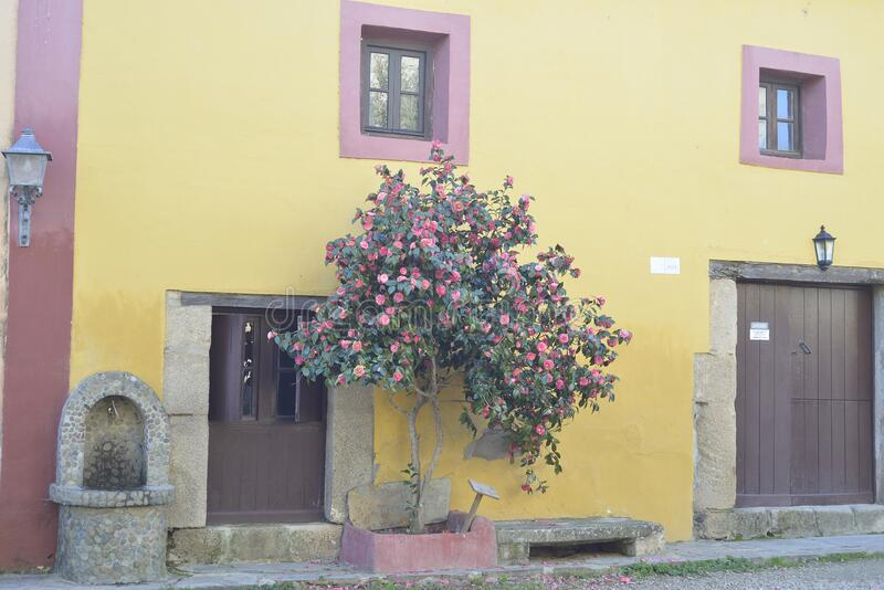 Restored house in the abandoned village of Granadilla in Caceres, Extremadura stock image