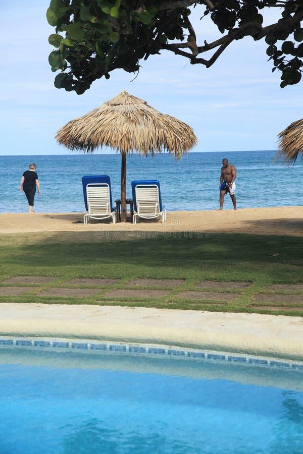 牙买加11 库存照片