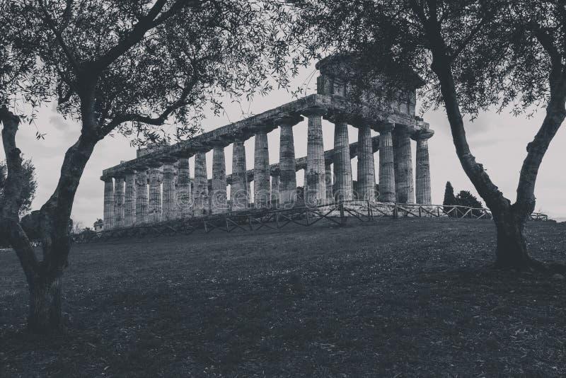 Restos arqueológicos de Paestum Salerno Italia imágenes de archivo libres de regalías