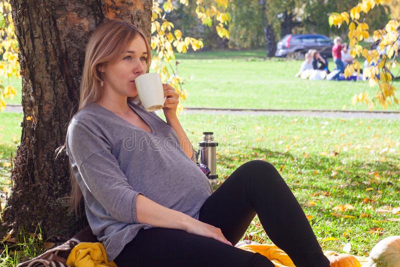 Restos bonitos da mulher gravida no parque Senta-se perto da árvore, e do chá da bebida O conceito da felicidade da família fotografia de stock