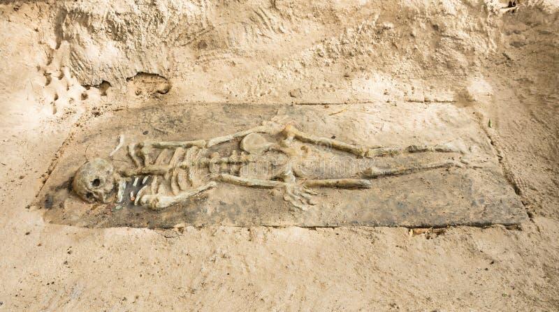 Restos de un esqueleto en Krabi, Tailandia fotografía de archivo libre de regalías