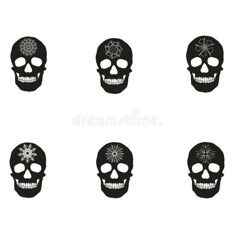 Restos Humanos De Los Huesos Del Cráneo Stock de ilustración ...