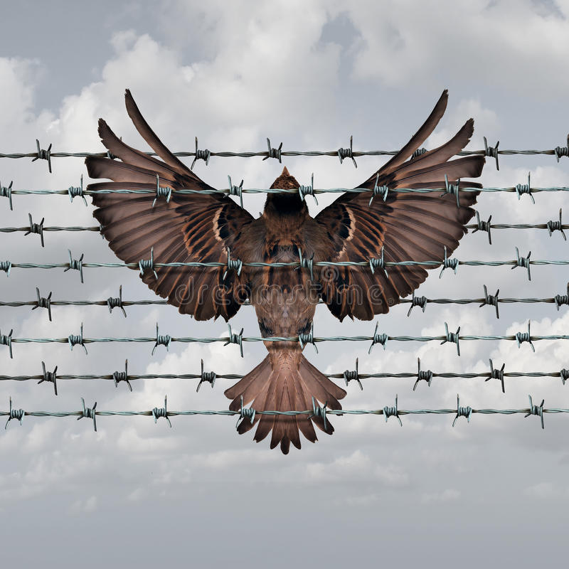 Restricted Freedom. Concept and constrained opportunity symbol as a bird caught and entangled in a barbed wire fence as an icon for frustration and suppression stock illustration