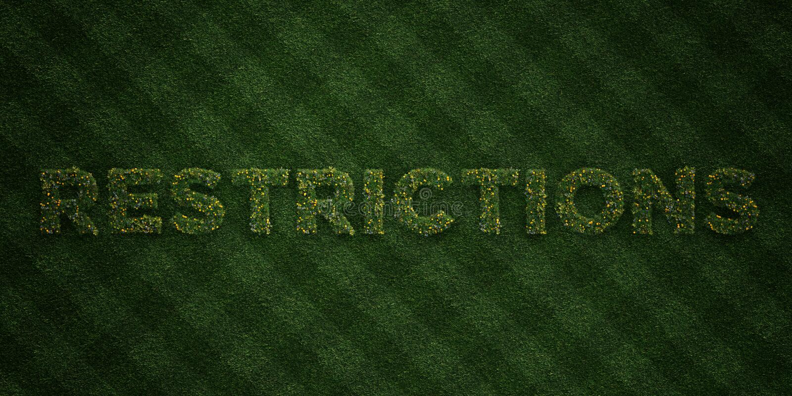 RESTRICTIONS - fresh Grass letters with flowers and dandelions - 3D rendered royalty free stock image. Can be used for online banner ads and direct mailers stock illustration