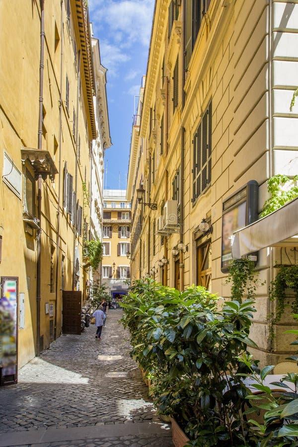 Restringa la via pavimentata con le vecchie case gialle e molti piante verdi/fiori, Roma, Italia fotografie stock
