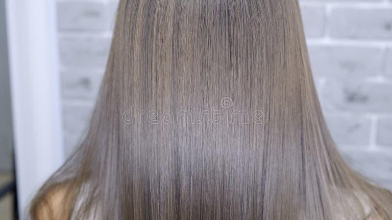 Resultado após a laminação e o cabelo que endireitam em um salão de beleza para uma menina com cabelo marrom Conceito dos cuidado imagens de stock royalty free