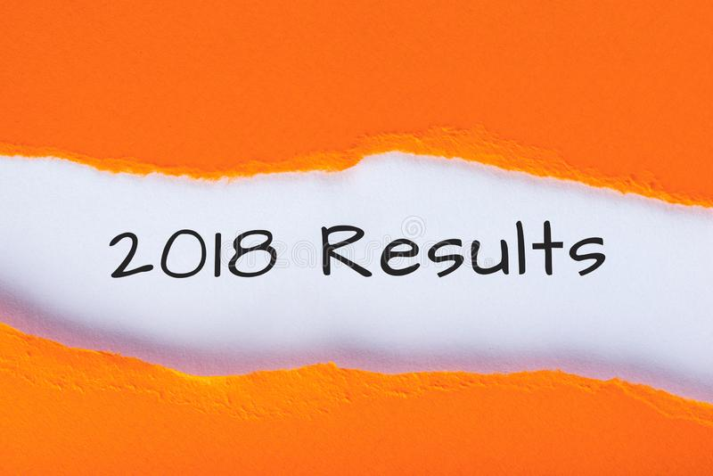 2018 results. Time to summarize and plan goals for the next year. Business background.  stock photography