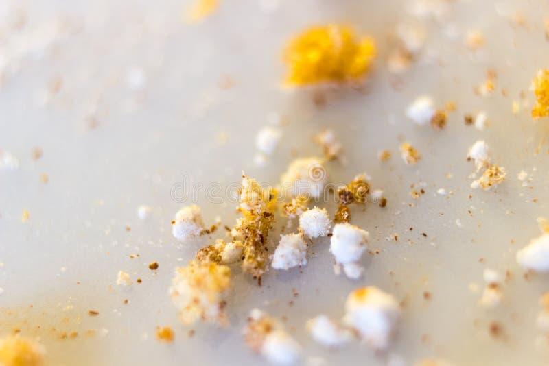 Resztki cynamon i sproszkowany cukier zdjęcia stock