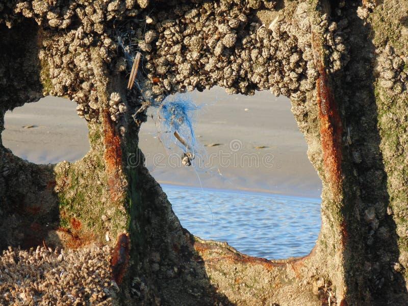 Resztki szczątki rozpraszali na piasku 10 obraz stock