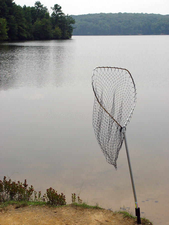 Rete dei pesci fotografia stock