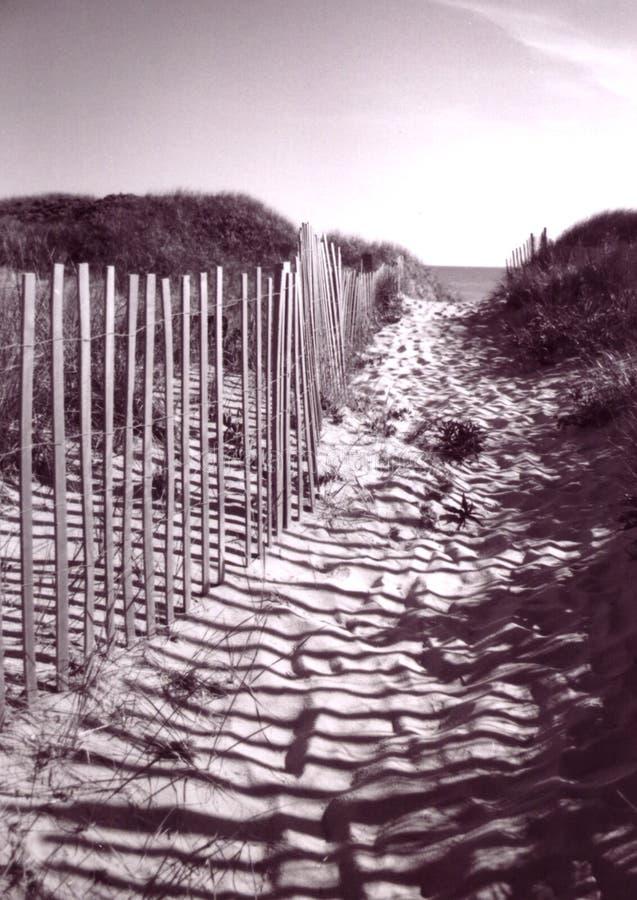 Rete fissa che piombo alla spiaggia del Capo Cod fotografie stock