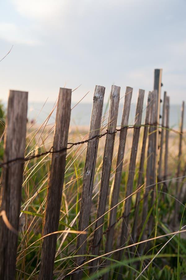 Rete fissa delle dune della spiaggia fotografia stock libera da diritti